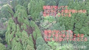 Fig.4 出の口集落北側斜面亀裂(2016.04.18撮影)